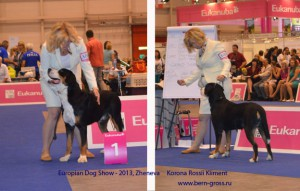 Kliment-Zheneva