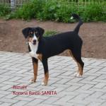 Sanita1-7m