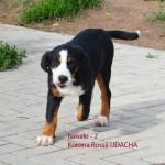 Udacha-5-3m