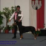Vasi-Salzburg-16